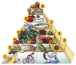 taplalkozasi_piramis_2